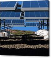 Solar Panels In Connecticut  Canvas Print