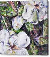 Sold Steal Magnolias Canvas Print