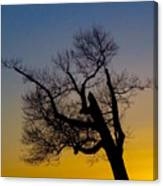 Solitary Tree At Sunset Canvas Print