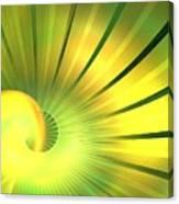 Solstice Canvas Print