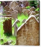Somber Granite Canvas Print