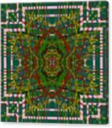 Some Color 89 Canvas Print