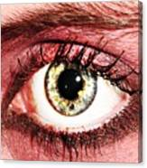 Something In The Eye Canvas Print