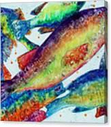 Something's Fishy Canvas Print