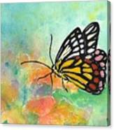 Song Of Joy - Butterfly Canvas Print