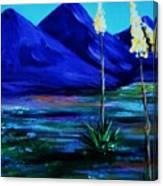Sonora Canvas Print