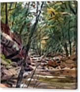 Sope Creek Three Canvas Print