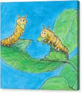 Sophie 5 Canvas Print