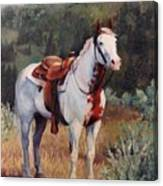 Sophie Flinders Paint Mare Horse Portrait Painting Canvas Print