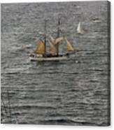 Soren Larsen Tall Ship Enters Sydney Harbour Canvas Print