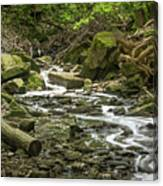 Sounds Of A Mountain Stream Canvas Print
