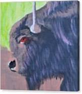 South Dakota Bison Canvas Print