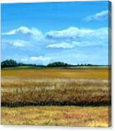 South Dakota Summer Canvas Print