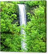South Falls Canvas Print