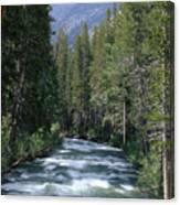 South Fork San Joaquin River - Kings Canyon National Park Canvas Print
