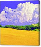 South Forty Canvas Print