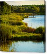 South From The Causeway Huntington Beach State Park Sc Canvas Print