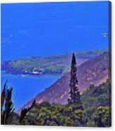 South Kona Coastline Canvas Print