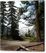 South Lake Tahoe Mountain Trail Canvas Print