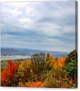 South Williamsport Foliage Canvas Print