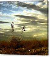 Southeastern New Mexico Canvas Print