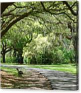 Southern Bench Canvas Print