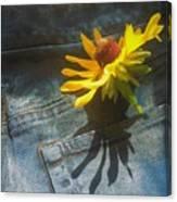 Southern Blue Jean Pocket Canvas Print