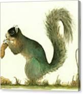 Southern Fox Squirrel Peanut Canvas Print
