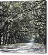 Southern Homecoming Canvas Print