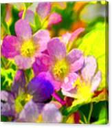 Southern Missouri Wildflowers 1 - Digital Paint 1 Canvas Print