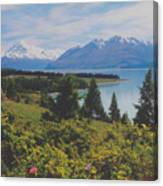 Southern New Zealand Lake Pukaki Canvas Print