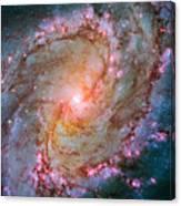 Southern Pinwheel Galaxy - Messier 83 -  Canvas Print