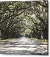 Southern Road Canvas Print