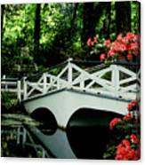 Southern Splendor Canvas Print