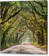 Southern Tree-lined Dirt Road Of Dreams Canvas Print