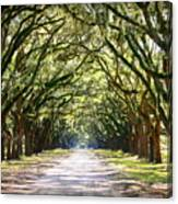 Southern Way Canvas Print