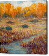 Southwest Autumn Canvas Print