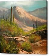 Southwest Beauty Canvas Print