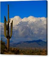 Southwest Saguaro Desert Landscape Canvas Print