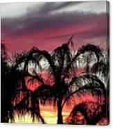 Southwest Sunset Canvas Print