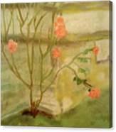 Southwick Hall Rose Canvas Print