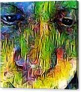 Sp Fbm Mode 4.5.18 Canvas Print