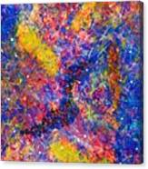 Space Glitter 15-14 Canvas Print