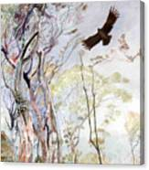 Span - Black Eagle Canvas Print
