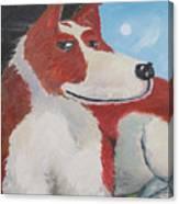 Spaniel Ancestor Canvas Print