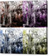 Spanish Moss Beauty Of Color Canvas Print