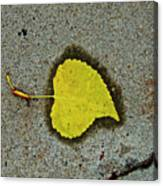 Spared Heart And Its All Yellow Canvas Print