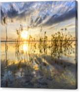 Sparkley Waters Canvas Print