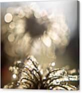 Sparkly Seedheads Canvas Print