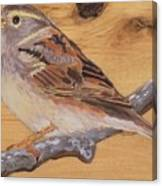 Sparrow 2 Canvas Print
